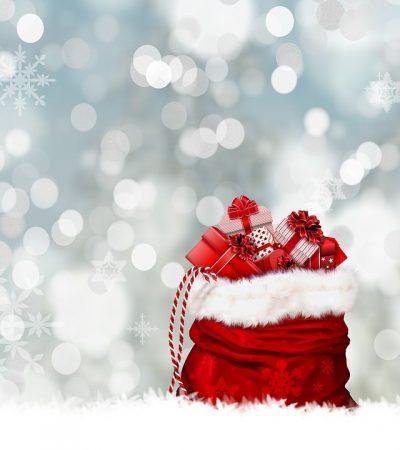 Per Natale regala ViviSostenibile