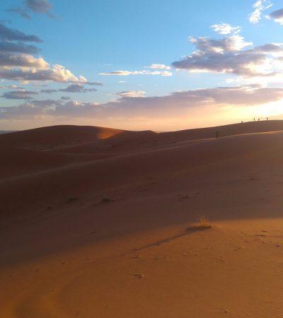 Velluto: diario ispirazionale dalla Valle delle Rose in Marocco
