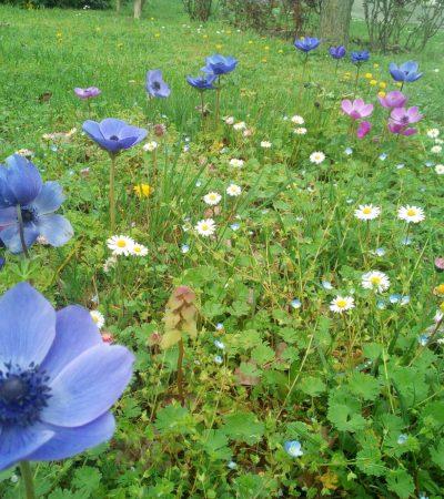 È arrivata la primavera: 3 idee per un week end fuori città