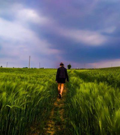 Donne che corrono coi lupi: il viaggio