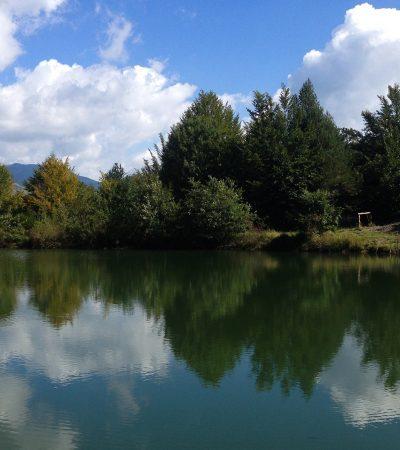 Come cambiare vita con la mindfulness: ce lo spiega Nicoletta Cinotti