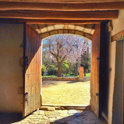 Pubblicizzare un agriturismo: non esistono solo i portali