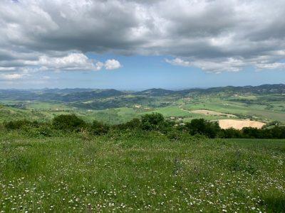 ViandantiSì: viaggia alla scoperta delle aziende agricole bio